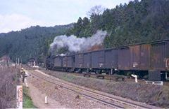 19720331C11